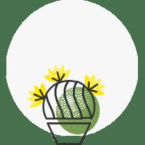 نوسازی گیاه